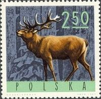 Poland 1965 Forest Animals g