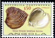 Angola 1974 Sea Shells c