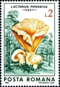 Romania 1986 Mushrooms c