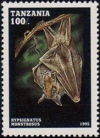 Tanzania 1995 Bats b