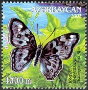 Azerbaijan 2002 Butterflies and Moths c