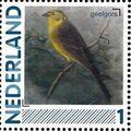 Netherlands 2011 Birds in Netherlands a14.jpg