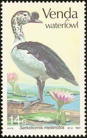 Venda 1987 Ducks a