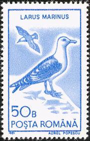 Romania 1991 Water birds a