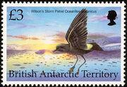 British Antarctic Territory 1998 Birds k