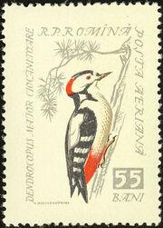 Romania 1959 Birds e