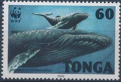 Tonga 1996 WWF Humpback Whale b