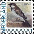 Netherlands 2011 Birds in Netherlands a25.jpg