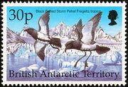 British Antarctic Territory 1998 Birds f