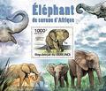 Burundi 2011 Elephants of the African Savanna SSa.jpg
