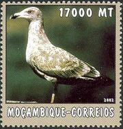 Mozambique 2002 The World of the Sea - Sea Birds 3 c