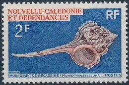 New Caledonia 1969 Sea Shells a