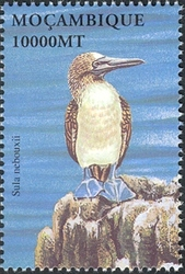 Mozambique 2002 Sea Birds of the World h