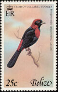 Belize 1978 Birds of Belize (2nd Issue) b