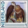 Netherlands 2011 Birds in Netherlands a8.jpg