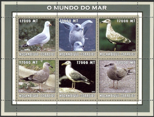 Mozambique 2002 The World of the Sea - Sea Birds 3 h