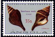 Angola 1974 Sea Shells r
