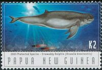 Papua New Guinea 2003 Protected Species - Dolphins d