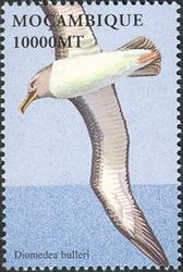 Mozambique 2002 Sea Birds of the World c