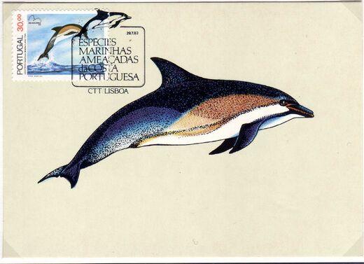 Portugal 1983 Brasiliana 83 - International Stamp Exhibition - Marine Mammals g