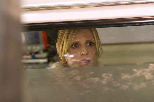 File:Still-of-sarah-michelle-gellar-in-the-grudge-(2004)-large-picture (1).jpg