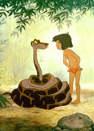 Mowgli is telling Kaa the Python that he told him a lie