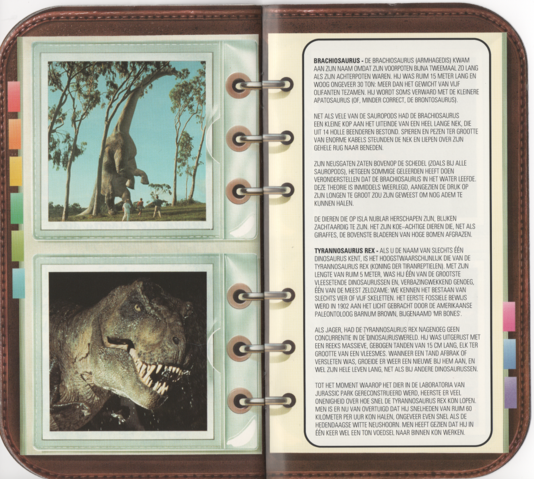 File:Fossil Booklet 7.png