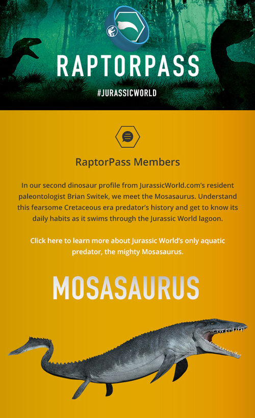 RaptorPass EMAIL MOS 04-Option2