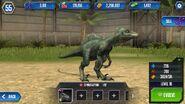 Spinoraptor by wolvesanddogs23-d99ox02