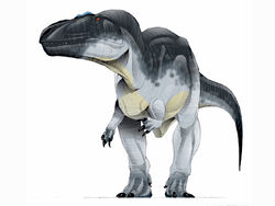 JPI-Carcharodontosaurus