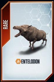 Entelodon card