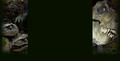 Миниатюра для версии от 14:58, мая 3, 2013