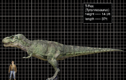 T-Rex size