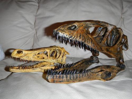 File:Velociraptor vs deinonychus.jpg