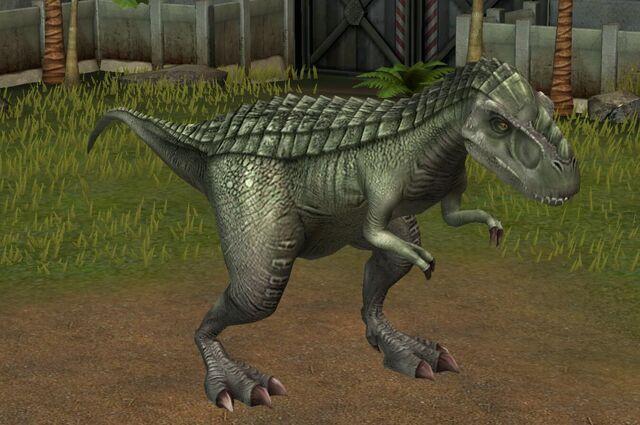 File:Gorgosaurus Libratus (13).jpg