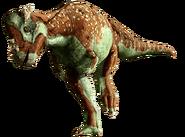 Pachycephalosaurus-info-graphic