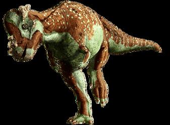 Pachycephalosaurus-info-graphic.png