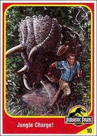 Triceratops collector card