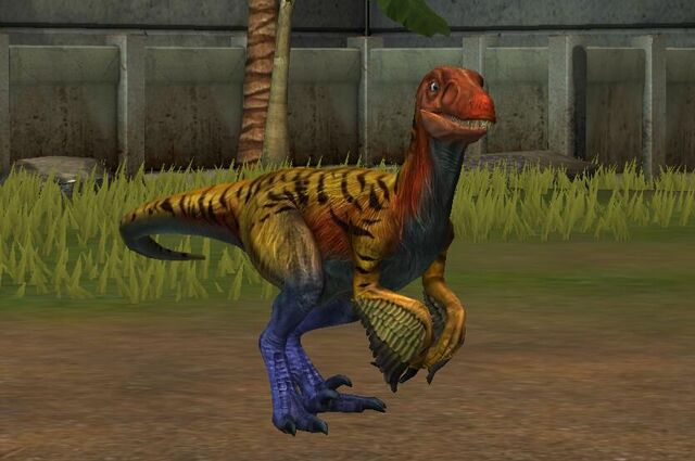 File:Pyroraptor (19).jpg