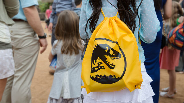 Файл:Yellow-backpack.jpg