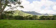 Isla-nublar-gallimimus-valley