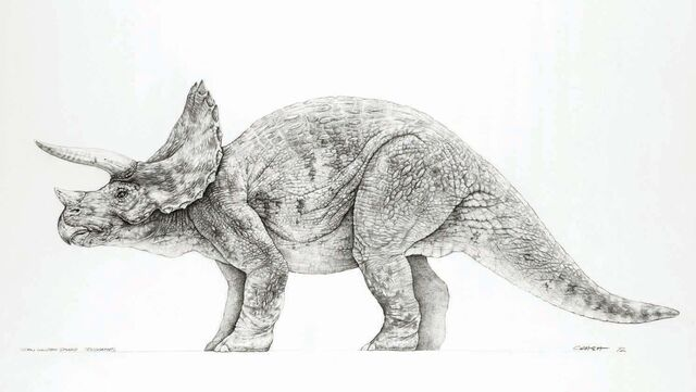 File:Triceratops concept art.jpg