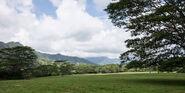 Isla-nublar-valley