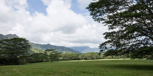 File:Isla-nublar-valley.jpg