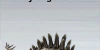 Tuojiangosaurus/Builder