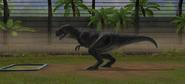 Jurassic World Majungasaurus (12)