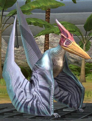 File:Pteranodon lvl 20.jpg