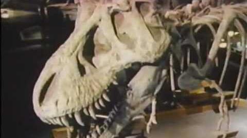 The Real Jurassic Park (Documentary) 1993