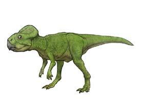 File:Microceratops1201972108.jpg