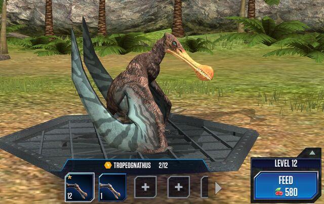File:Tropeognathus 1S.jpg